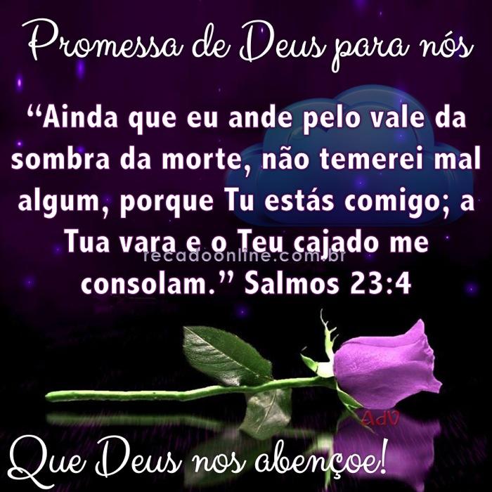 Salmos 23 4